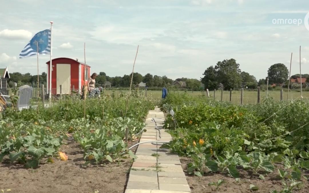 Linges Landgoed Woonzorg op TV Gelderland